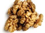 Закупаем ядро грецкого ореха - фото 1