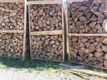 Beech Firewood - photo 2