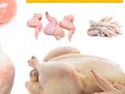 Chicken shawama , cken feet , chicken paw , wings , chicken parts