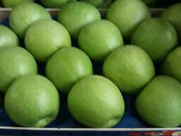Фрукты , овощи, свежая зелень. - фото 2