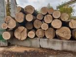 Unedged oak lumber - фото 1
