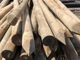 Ξυλεία τόρνου Ελάτης, κορμακια, κολωνες Δεη - photo 1